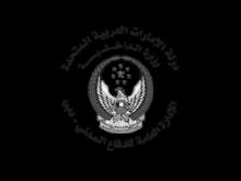 Dubai Civil Defense Low Code